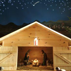 szopka bożonarodzeniowa (9)